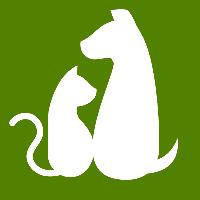 イヌとネコの診療