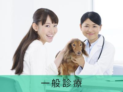 ヴァル動物病院の評判・口コミ - 兵庫県西宮市【動 …